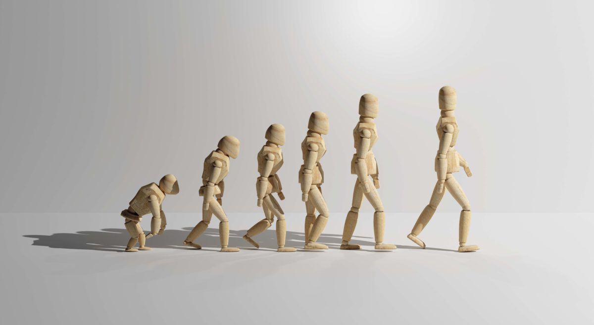 Stick Figure Human Evolution Web